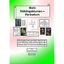 Mein Herbarium der Frühlingsblumen