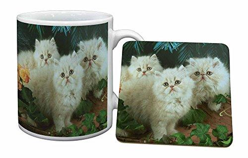 Advanta - Mug Coaster Set Sahneperser Kittens Becher und Untersetzer Tier Geschenk - Persischen Becher