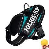TRIXIE JULIUS-K9 JKGB1+BALL Gratis Powergeschirr Baby 1 Geschirre Hundegeschirre Hunde (XS(29-36 cm/18 mm), petrol)