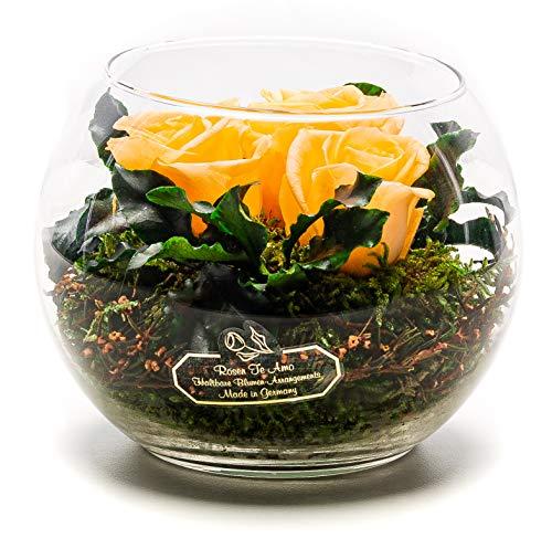 Rosen-Te-Amo Stilvoller Blumenstrauß aus 3 konservierte pfirsichfarben Blumen in der Vase; Infinity Rosen im Glass: schön handgefertigt aus 100{d432f94b5c7c7bbee133af6f8932b1e9d6f4cf5ad81420b3599a9d109c942264} echtes Bindegrün - 3 Jahre haltbar ohne Wasser