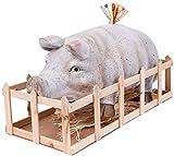 Mediablue Jumbo Sparschwein mit Holzkiste XXL 55 cm aussergewöhnliches Geschenkt