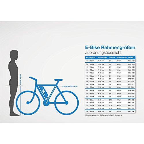 fischer-e-bike-komfort-ecu-1760-mit-gefederter-sattelstuetze-und-memofoam-sattel-mittelmotor-48-v-557-wh-powered-by-bafang-3