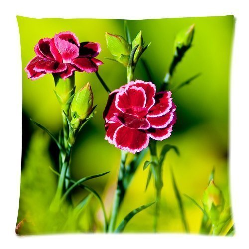 soft-cotton-decorative-pillowcase-cushion-print-colorful-carnation-beautiful-photo-gift-for-babys-si