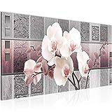 Bilder Blumen Orchidee Wandbild Vlies - Leinwand Bild XXL Format Wandbilder Wohnzimmer Wohnung Deko Kunstdrucke Rosa Grau 1 Teilig - MADE IN GERMANY - Fertig zum Aufhängen 204612c