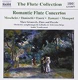 Romantische Flötenkonzerte