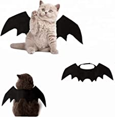 DryMartine Halloween Katze Kleidung, Katze Fledermaus Kostüm | Haustier Fledermausflügel