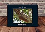 VERO PUZZLE 57291 Animals Koala, 1000 pieces in high quality, cellophaned puzzle box