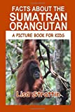 Facts About the Sumatran Orangutan (A Picture Book for Kids, Vol 332)