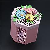 DISPLAY08exquisite Paperworks decorativo box contenitore fustella Gift fai da te di stencil