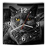 LAUTLOSE Designer Wanduhr mit Spruch Katze schwarz grau weiß modern Dekoschild Abstrakt Bild 29,5 x 28cm