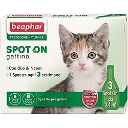 Beaphar - Protección natural para tu gato (3Pipetas)- Solución antiparásitos definitiva para gatos y gatitos con protección natural, gattino