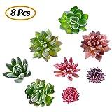 Comius Planta Suculento Artificial, Plantas Suculentas Artificiales Mini Follaje Plástico...