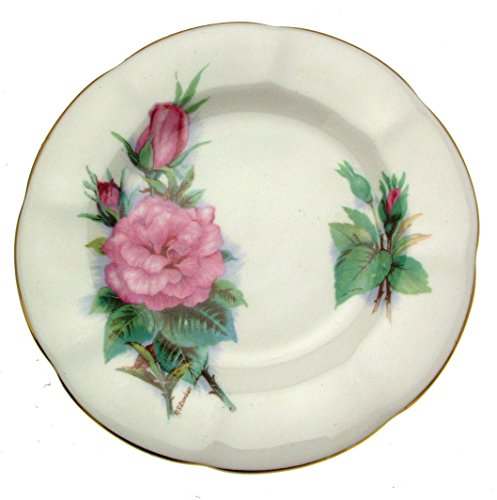 Wheatcroft roses Royal Standard Roslyn 15,9cm Prélude Platte Wheatcroft Rosen