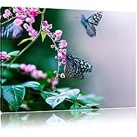 belle farfalle sui fiori rosa, formato: 120x80 su tela, XXL