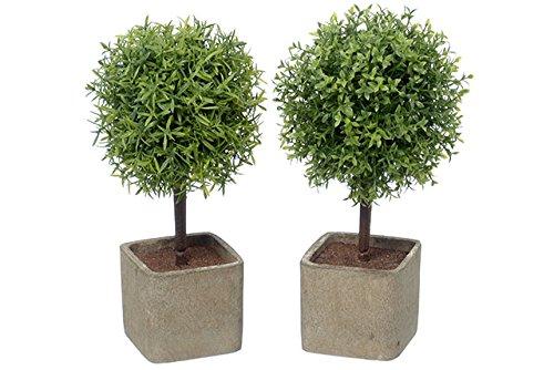 Buchsbaum Kunstlich Viel Schonheit Null Probleme