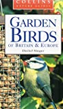 Garden Birds of Britain & Europe (Collins Nature Guides)