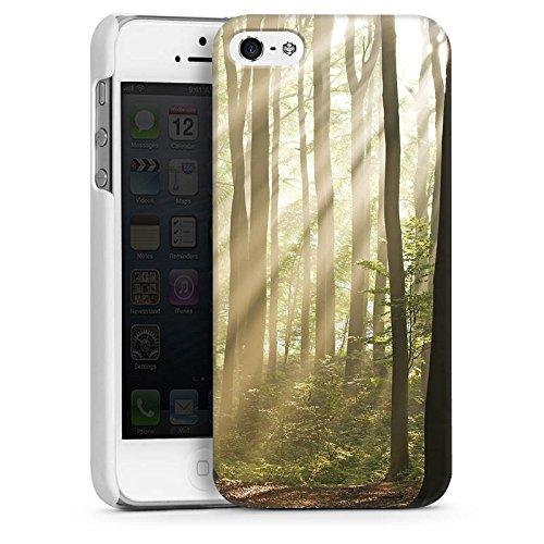 Apple iPhone 5s Housse Étui Protection Coque Forêt Clairière Rayons de soleil CasDur blanc