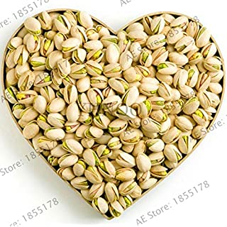 PLAT FIRM Germination Seeds: Big Sale! Nut Tree Pistachios Plants Chinese Pistacia Rare Outdoor Fruit Tree Ga