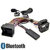 Watermark WM-BTMIC09 Bluetooth Adapter für Ford Fiesta Focus Kuga Galaxy Mondeo Transit Radio 6000CD Sony Spotify Freisprechen Telefonieren MP3 Musik Streaming