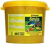 Tropical Spirulina Flakes Pflanzliches Flockenfutter mit Spirulina