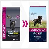 fettarmes hundefutter Vergleich