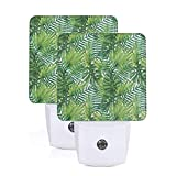 Tropical Exotic Banana Forest Palm Tree Leaves Watercolor Design Theme Image Auto Sensor LED Dusk to Dawn Night Light Set Of 2 White