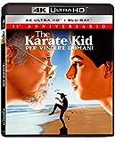 Karate Kid (1984) (4K+Br)