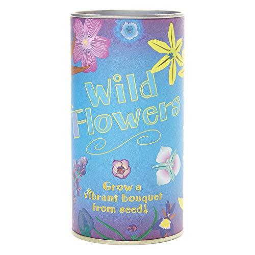PLAT FIRM GERMINATIONSAMEN: Wildflower Mix | Saatgut wachsen Kit | Die Jonsteen Unternehmen -