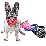 BFACCIA Hund Halstuch Dreiecks-Tuch Bandana geeignet für kleines Haustier