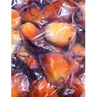 Palm Nuts 250g Natural Parrot Food With Fleshy Outer Fruit and Nut