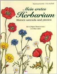 mein erstes herbarium blumen pressen und sammeln claudia toll ilka sokolowski. Black Bedroom Furniture Sets. Home Design Ideas