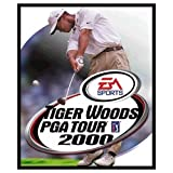 Tiger woods 2000
