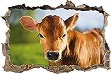 Junge Kuh Kälbchen Wanddurchbruch im 3D-Look, Wand- oder Türaufkleber Format: 62x42cm, Wandsticker, Wandtattoo, Wanddekoration