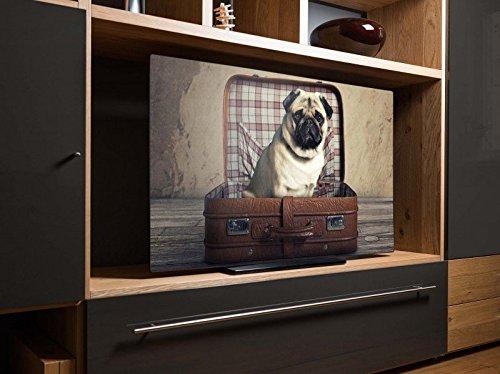 24-zoll-mop (screencover - Abdeckung für Ihren Flatscreen, alle Zollgrößen möglich, Material Hartschaum weiß, mit Motiv Mops im Koffer, Größe 24'' TV (65cm x 42cm))