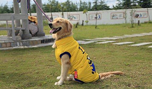 Pet Hund Pullover Großer Hund T Shirt Warm Coat Kleidung (Mail E Kostüm Dog Tägliche)