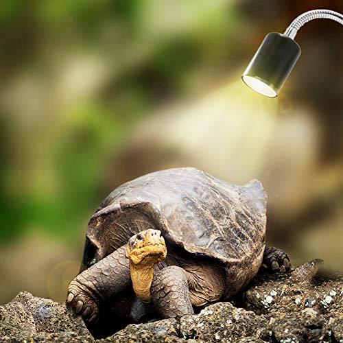 Comtervi Reptilien Lampe beheizte Aquarium Schildkröte Lampe für Aquarium Beleuchtung 25W UVA UVB mit Base Lange 360 ° Rotation für Reptilien und Amphibien [Energieklasse A +]