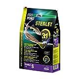 JBL Pro Pond Sterlet S KG. 3 Accessori Per Laghetti