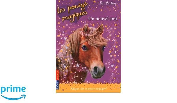 les poneys magiques tome 1 un nouvel ami amazoncouk sue bentley angela swan dominique roussel 9782266205566 books