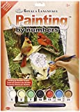 Junior Small Paint By Number Kit 8-3/4X1...