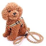 Reflektierende Hundeleine Kleine und Mittlere Hunde Polyester Geflochtener Brustkorb Buffer Seil (Farbe : Orange, größe : S)