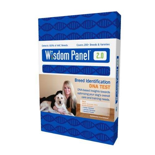 Preisvergleich Produktbild Mars Veterinary Wisdom Panel Insights Dog DNA Test - WP-DNA
