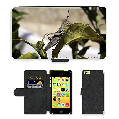 Just Mobile pour Hot Style Téléphone portable étui portefeuille en cuir PU avec fente pour carte//m00138844égyptien Sauterelle Sauterelle//Apple iPhone 5C