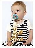 Baby Füttern–Nuby–Snoozies Schnuller Combo Set Giraffe 92815