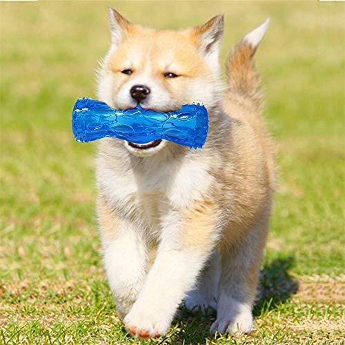 huichang Hunde Behandeln, Hunde Zahnreinigung Sticks für Hunde Spielen und Kauen (für 0-10kg Hund) -