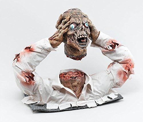 Cut Off Display Zombie Head Display Off B000VO92IQ 830ea4
