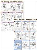 Strength Training Anatomy Poster Series