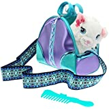 ColorBaby - Sparkle Girlz Gatito & trasportín turquesa con asa y cepillo de plástico turquesa (85149)