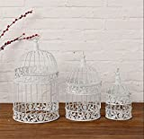 #1: Hand Made Fashion Large Antique Decorative Bird Cages Classic Iron Birdcage for Wedding Decoration 3 Pc Set