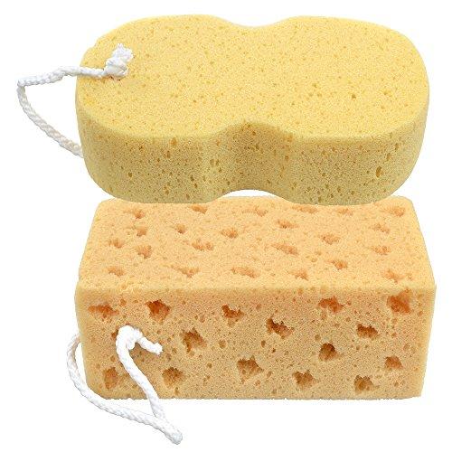 Eteng-super-water-absorbing-corallo-spugna-Honey-Comb-design-per-auto-finestre-vetri-e-tutte-le-superfici