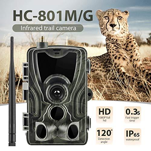QYLT 2G 1080P 16MP Wildkamera Fotofalle mit IP65 wasserdichte Jagdkamera 36 Pcs Low-Glow 940nm Infrarot-LEDs, Infrarot-Nachtsicht bis zu 20m, Triggerzeit 0.3s für Jagd Überwachung Gsm-led Handy